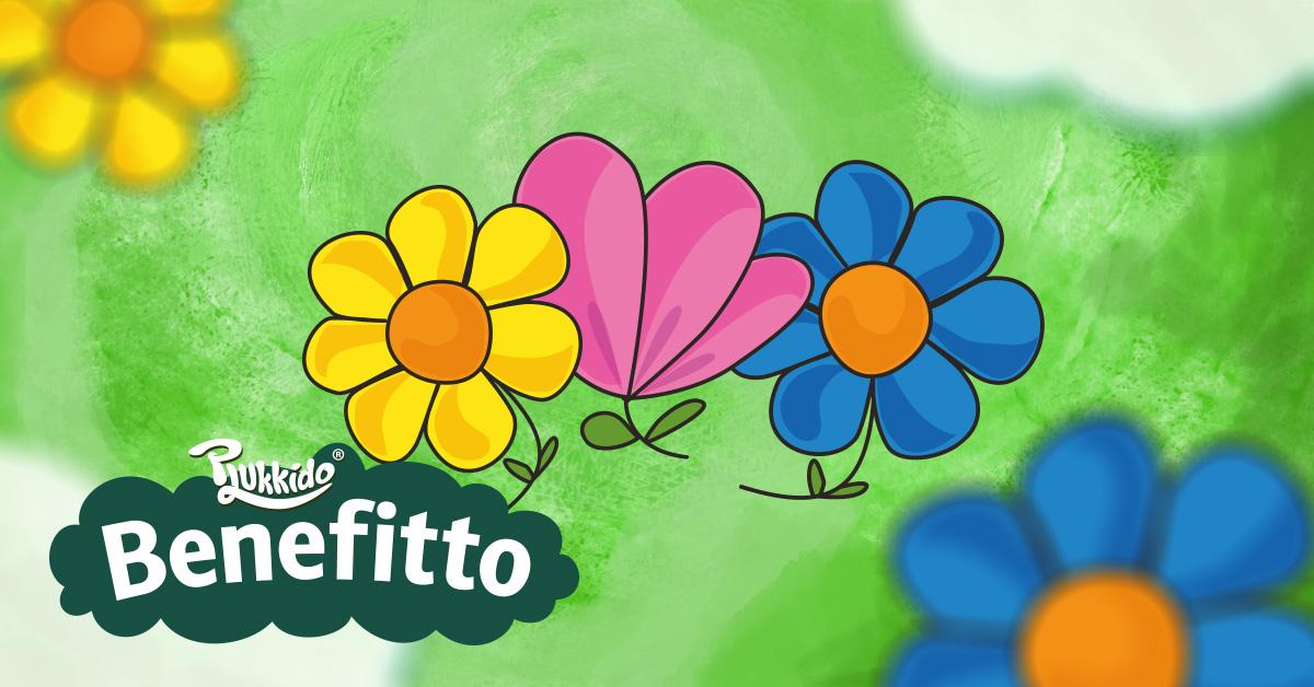 Virágok - Plukkido